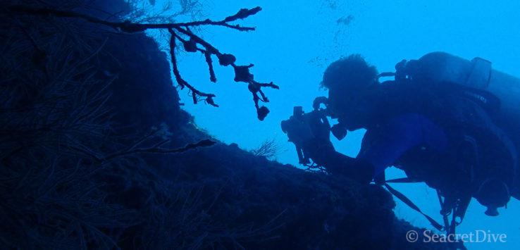renaud-film-maldives-seacretdive
